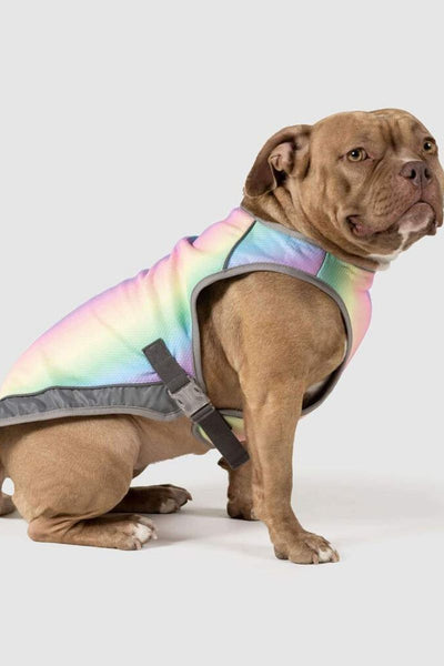Canada Pooch Chill Seeker Cooling Vest Rainbow