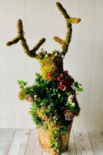 Reindeer Topiary Birch Arrangement