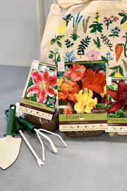 Summer Bulbs Essentials Kit