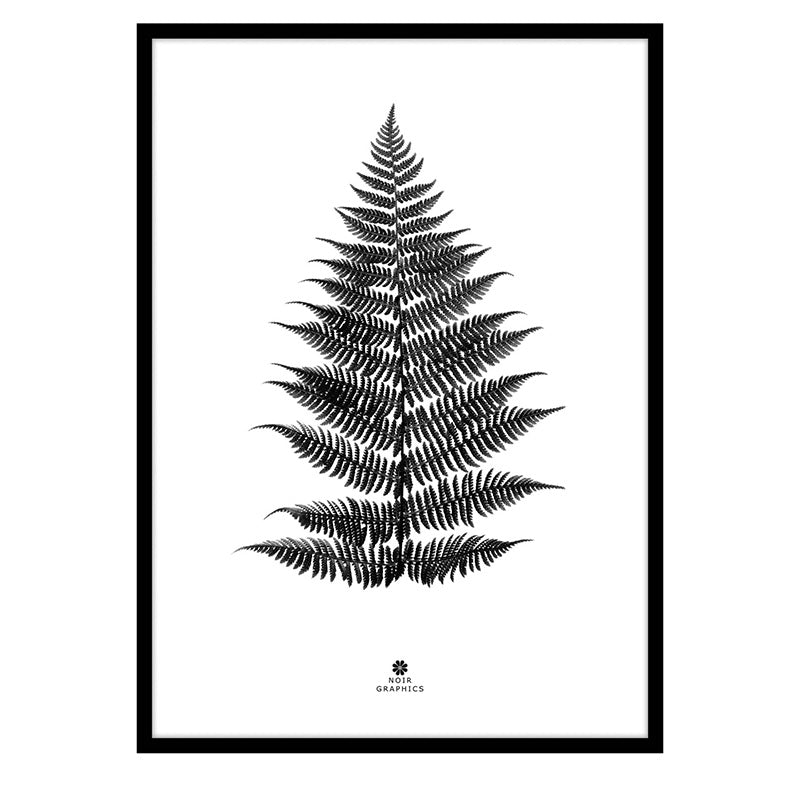 Large Fern Print in Black Frame