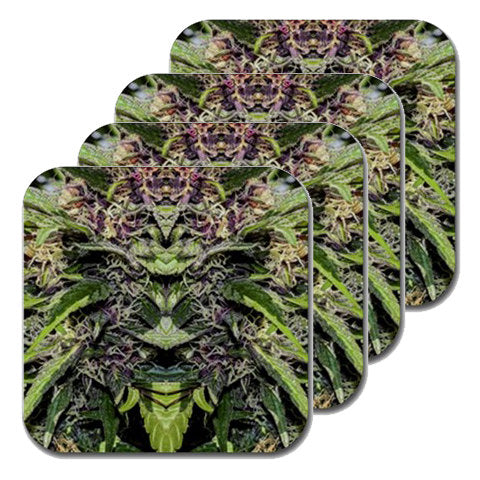 Cannabis Coasters: Four Pack Marijuana Coaster in Marijuana Print, Coasters, Table Coasters, Ganja Coasters