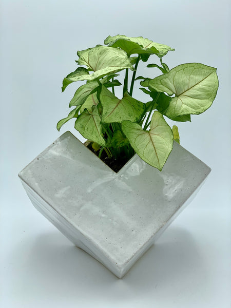 Large White Planter