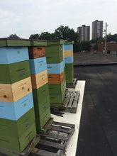 Gearing up for Beekeeping - March 24, 2018
