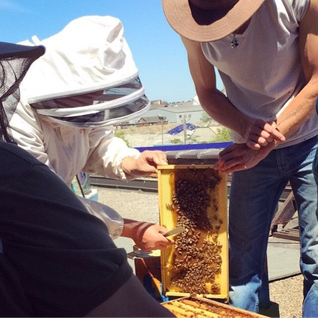 Private Lesson @ our apiaries