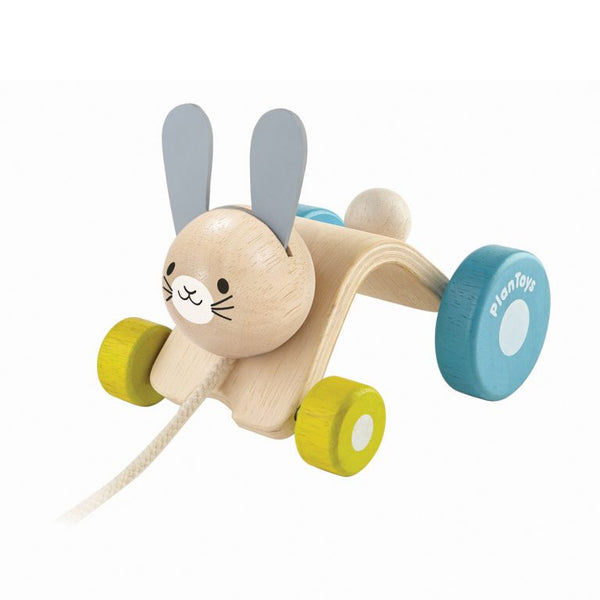 Hopping Rabbit Pull Toy