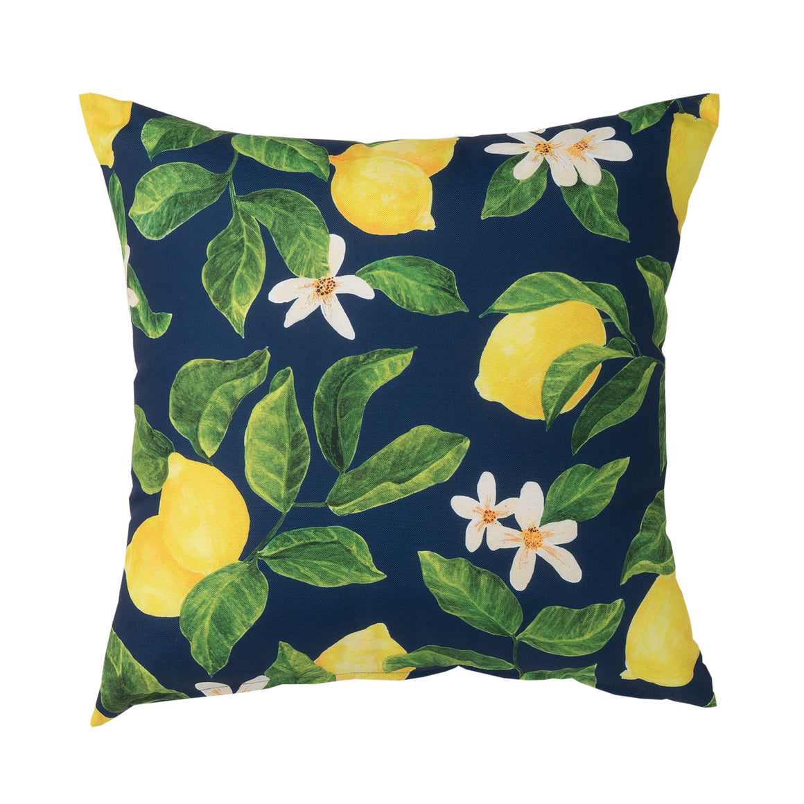 Navy & Lemon Outdoor Cushion