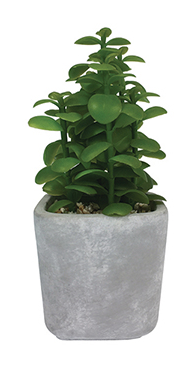 Faux Leafy Green Succulent in Concrete Pot