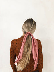 Ladies In Pink Scarf Pony