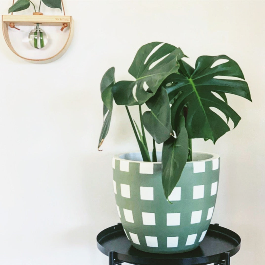 CRISS CROSS POT - EUCALYPTUS