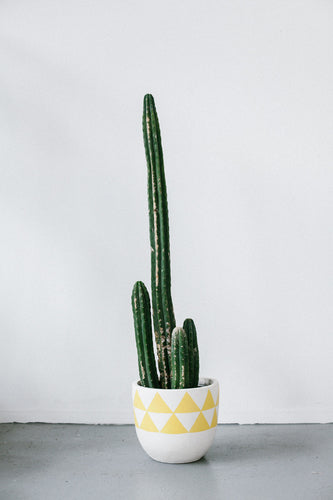 AZTEC POT YELLOW