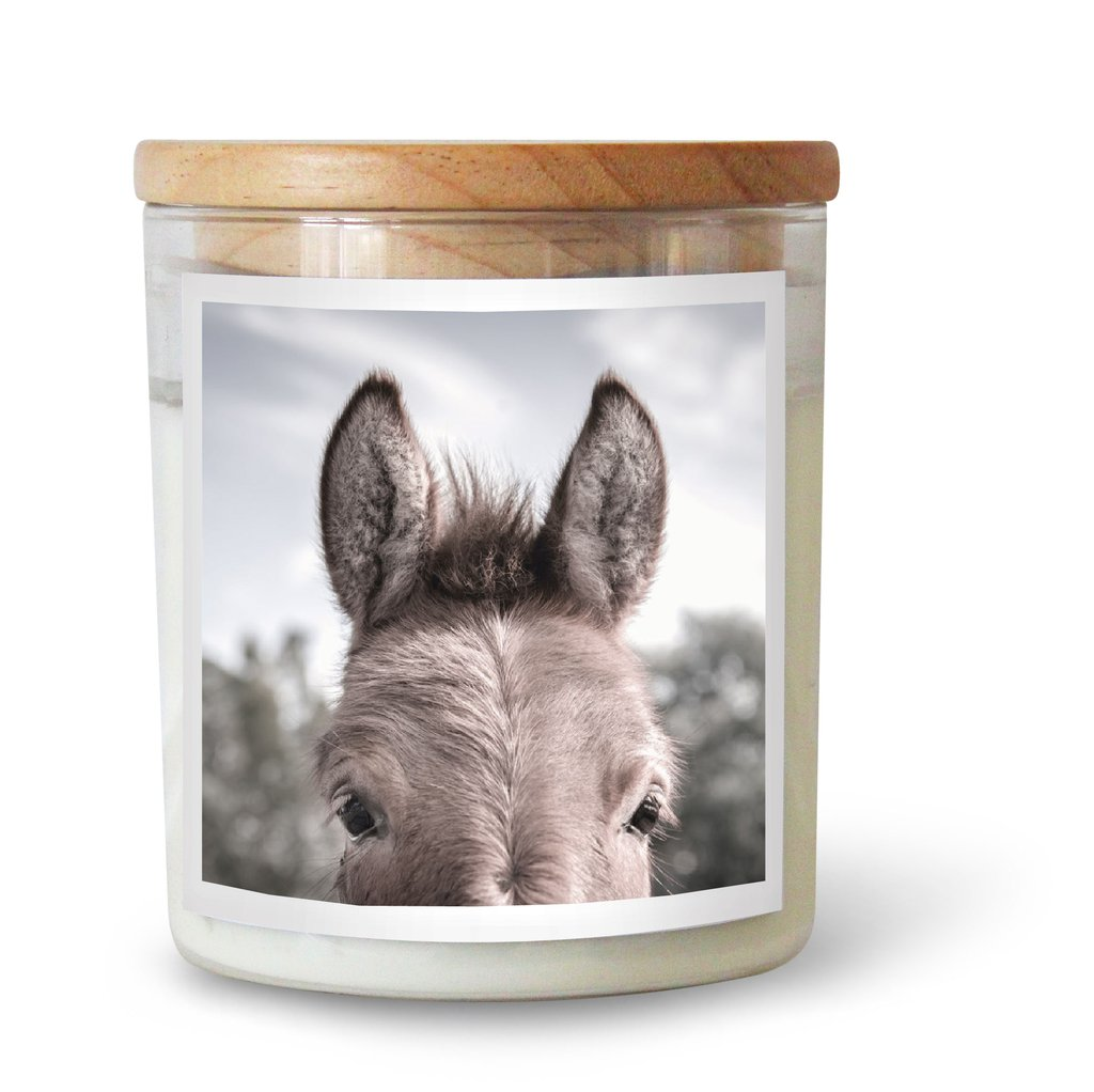 THE DONKEY SOY CANDLE
