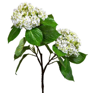 HYDRANGEA WITH LEAVES STEM - WHITE