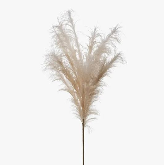 PAMPAS GRASS STEM - BLUSH PINK