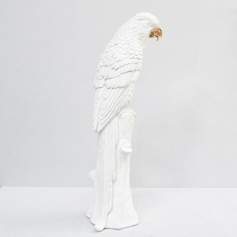 GOLD BEAK WHITE PARROT