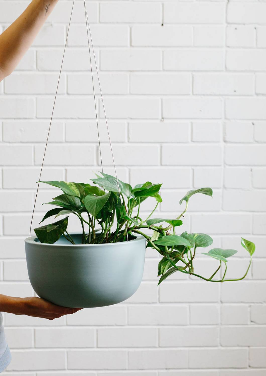 RAW EARTH SHALE GREEN HANGING PLANTER