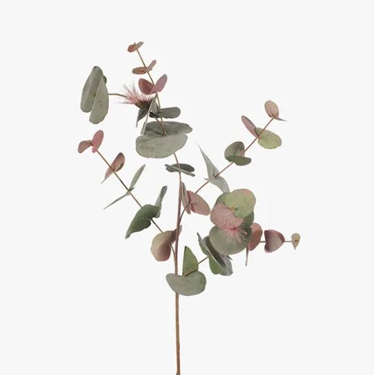 EUCALYPTUS FLOWERING SPINNING GUM STEM - PINK