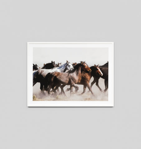 GALLOPING PONIES FRAMED ARTWORK
