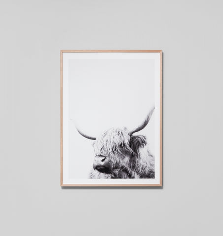 HIGHLAND FRIEND FRAMED ARTWORK - GREY