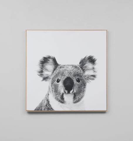 KOALA - FRAMED CANVAS PRINT