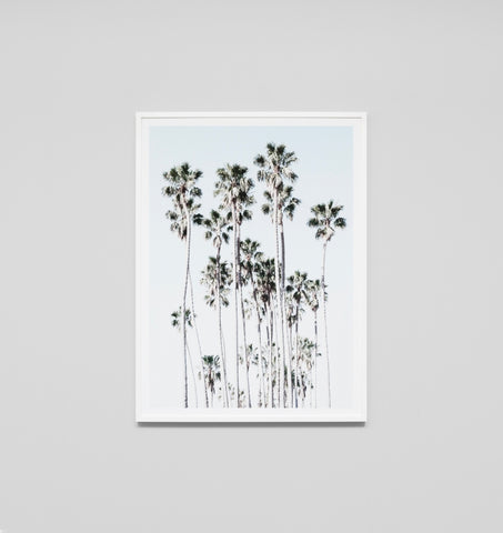 LOS ANGELES PALMS FRAMED ARTWORK