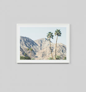 PALM HILLS FRAMED ARTWORK