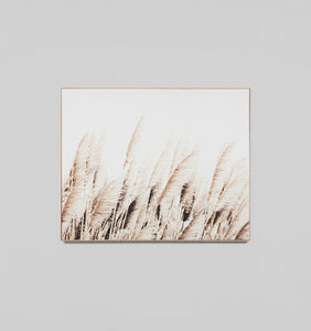 PAMPAS BREEZE - FRAMED CANVAS PRINT