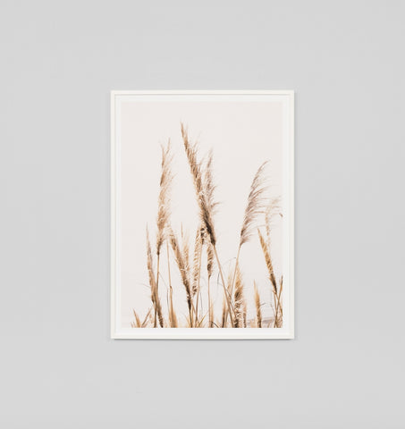 PAMPAS SKY FRAMED ARTWORK