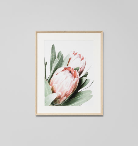 PROTEA FRAMED ARTWORK