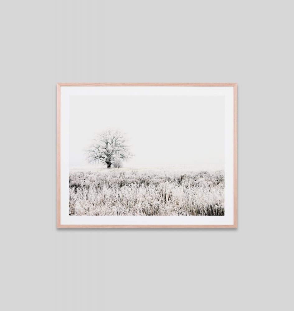 SNOWY MEADOW FRAMED ARTWORK