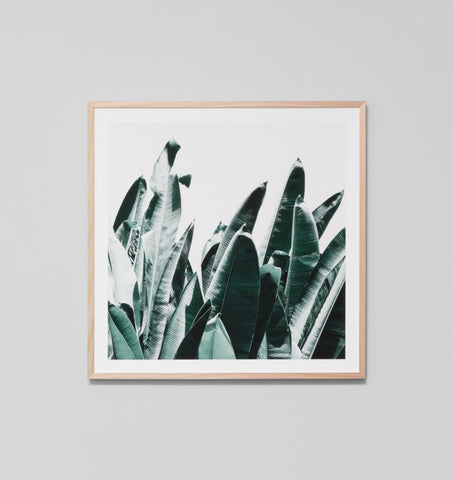 SUMMER LEAVES FRAMED ARTWORK #1