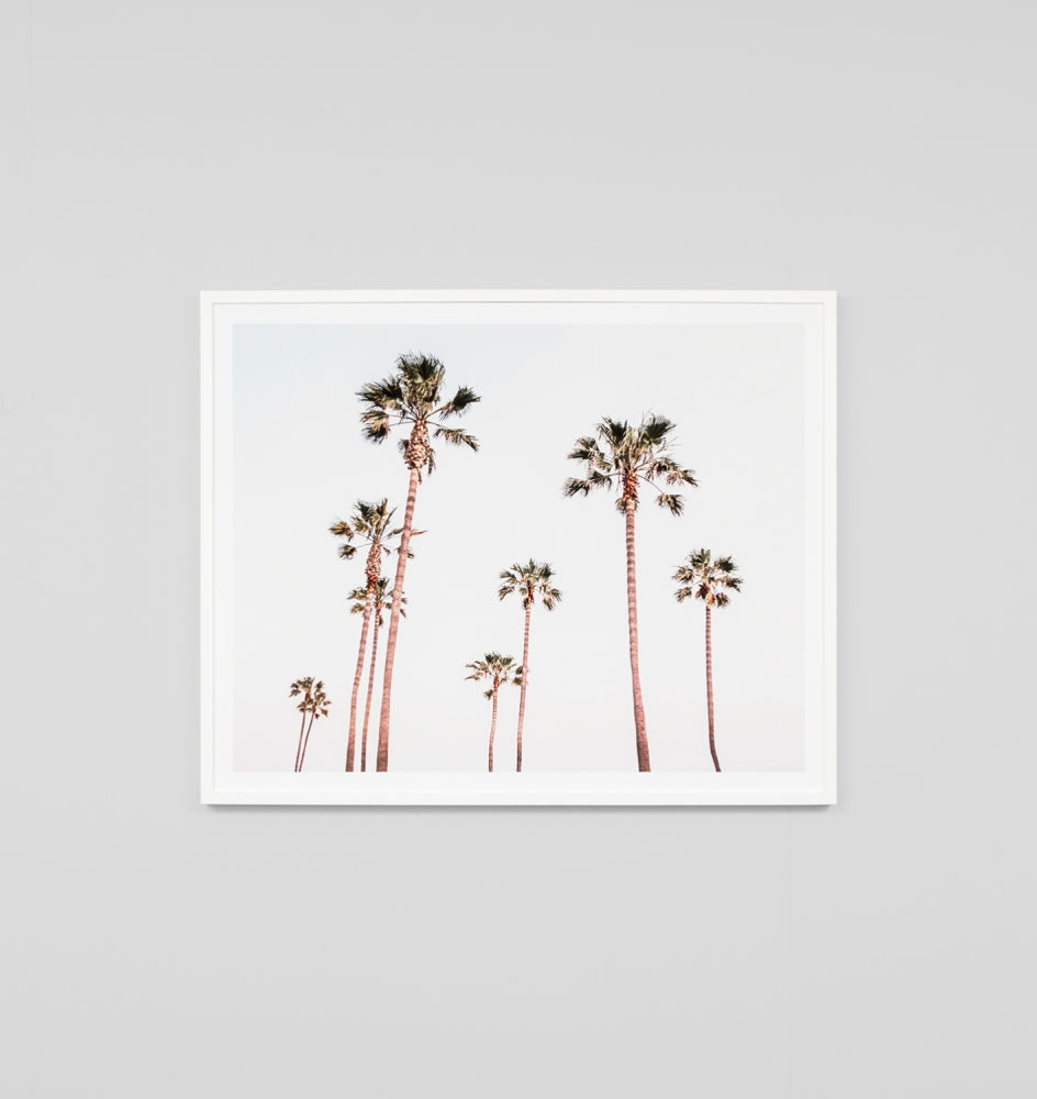 SUNSET PALMS FRAMED ARTWORK