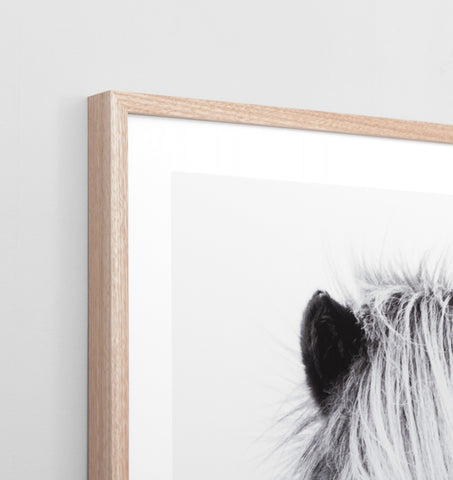 WINTER FOAL FRAMED ARTWORK