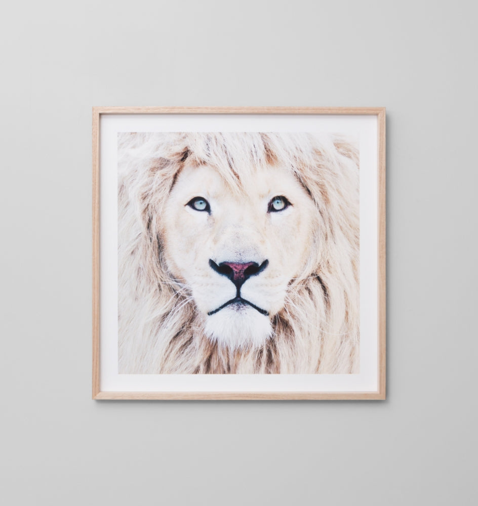WINTER LION FRAMED ARTWORK