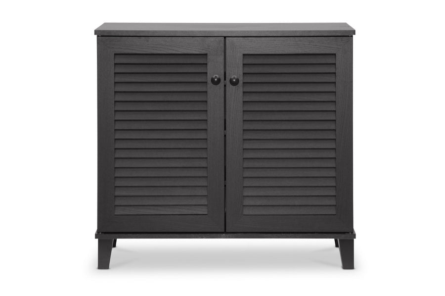Contemporary Storage Shoe Cabinet in Dark Brown
