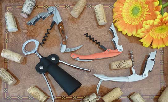 WINE ENTHUSIAST ACCESSORIES