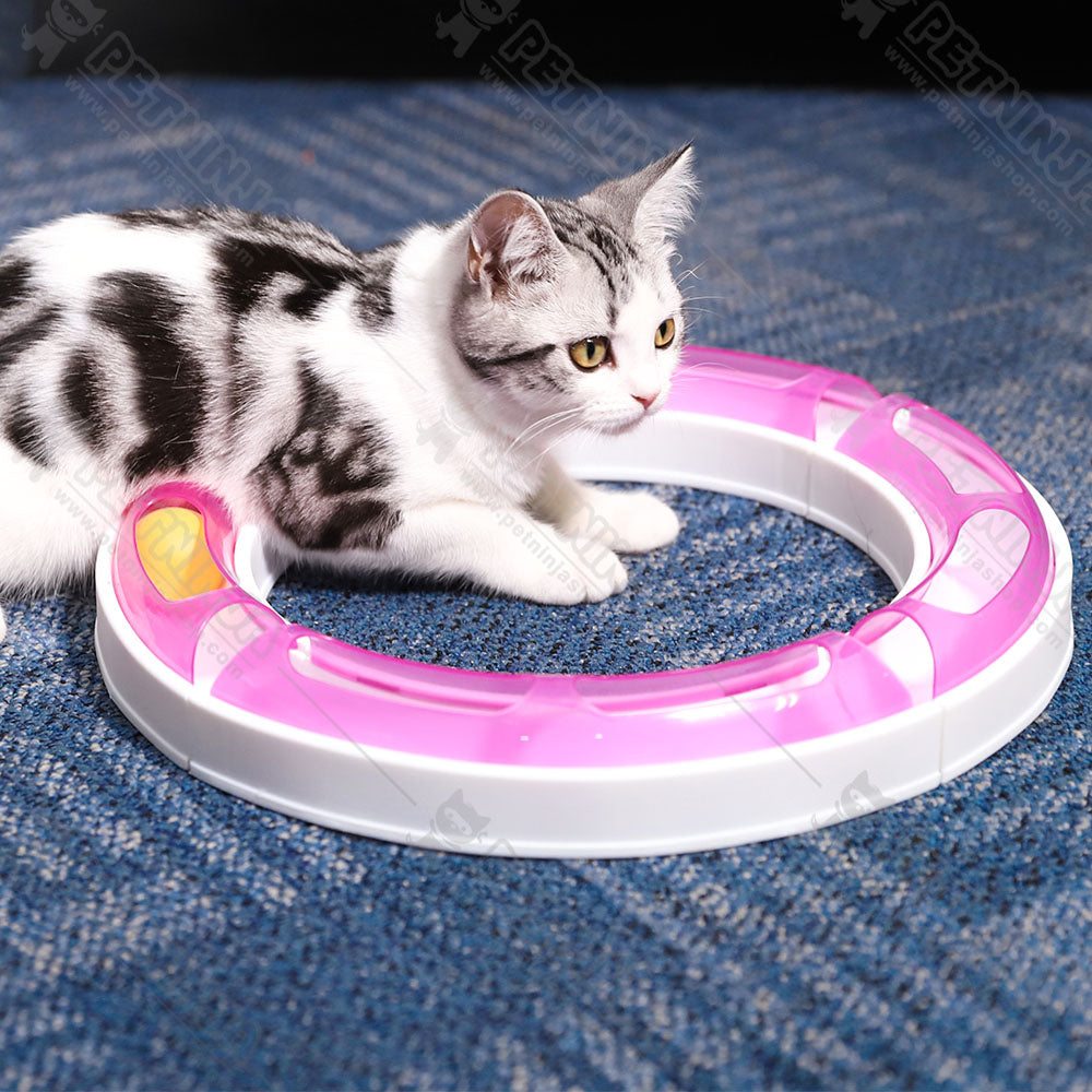Super Roller Circuit Cat Track Ball Toy