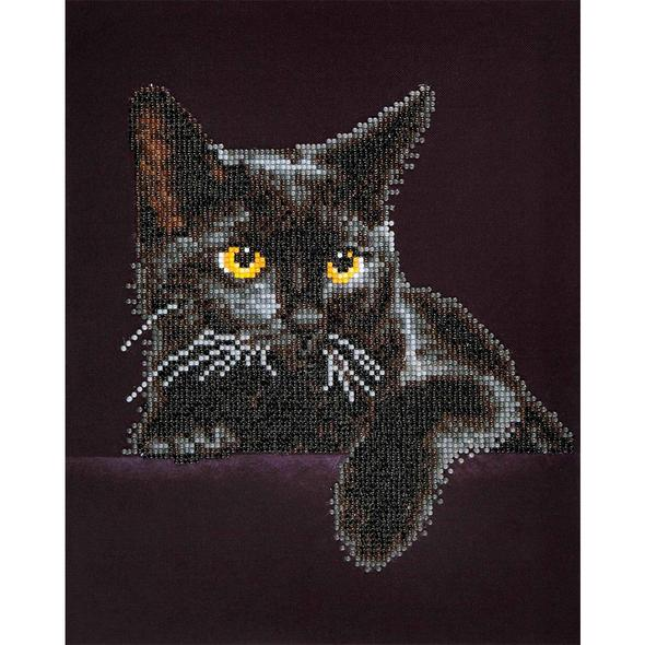 Black Cat - Full Drill Diamond Painting