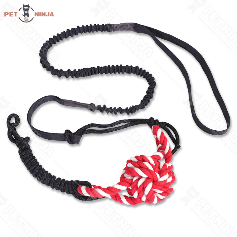 Outdoor Hanging Dog Bungee Rope Toy