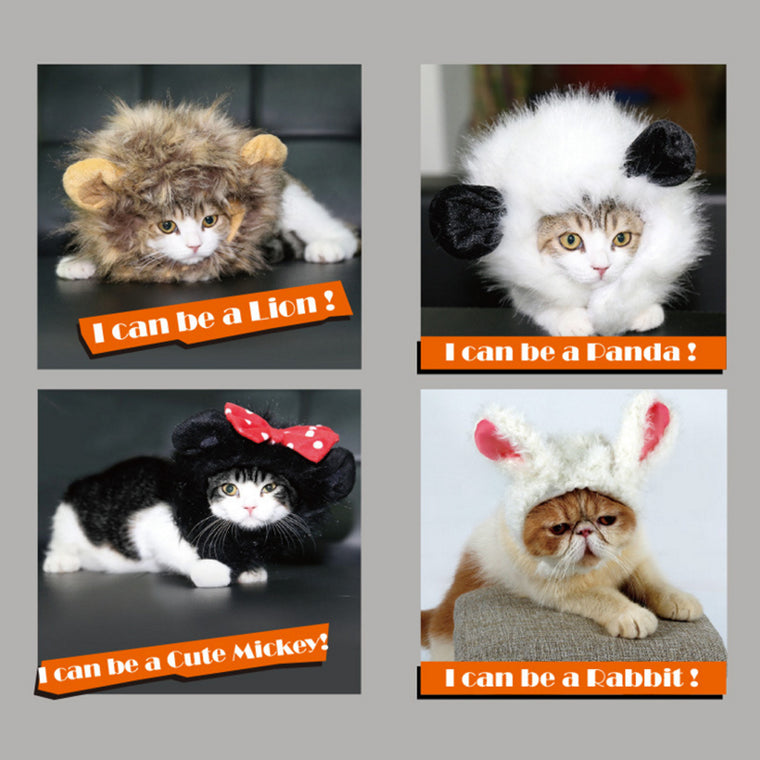 Adorable Wig for Cat or Small Dog Fancy Dress up
