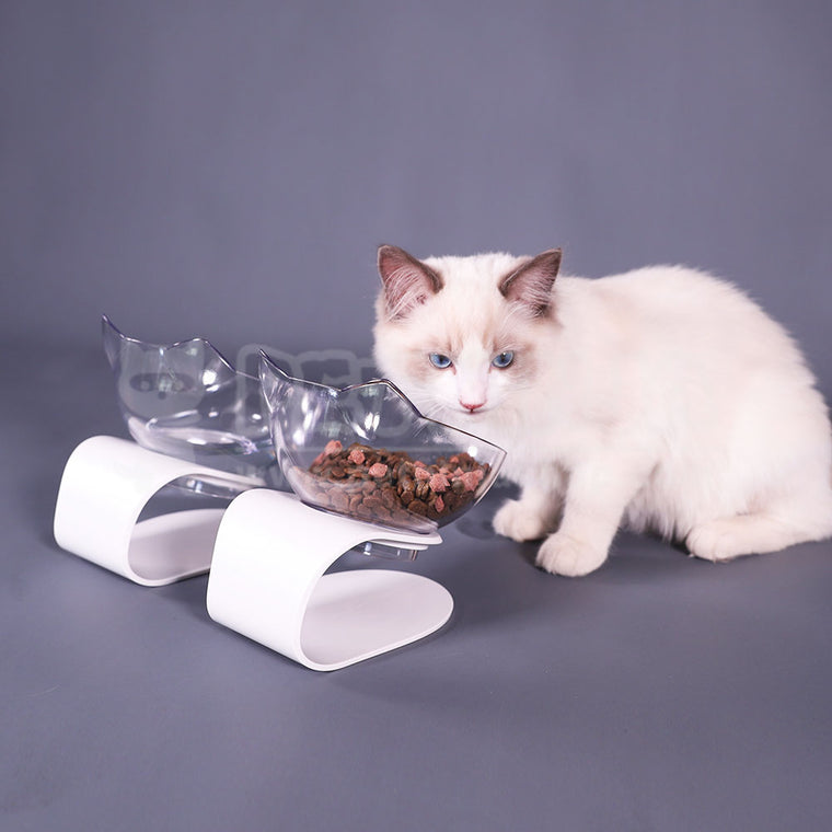 Health-Consideration Removable Pet Feeder