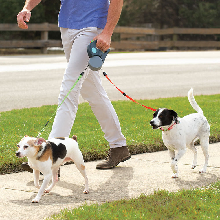 Zero Tangle Double Dog Leash