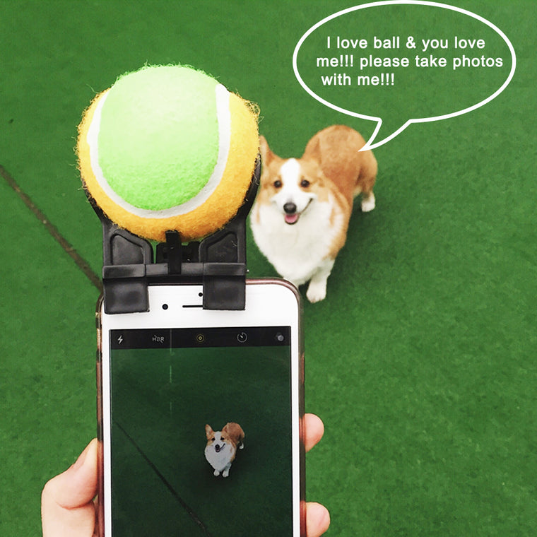 Smartphone Attachment Selfie Stick for Pets