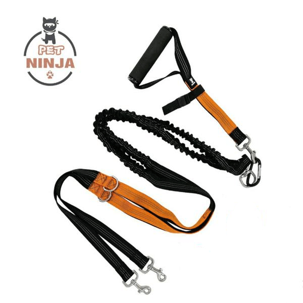 Leash Combo Pack (LED Double Leashes + Hands-free Leash)