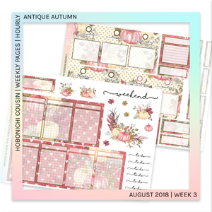 HOBONICHI COUSIN | HOURLY STICKER KIT | Antique Autumn