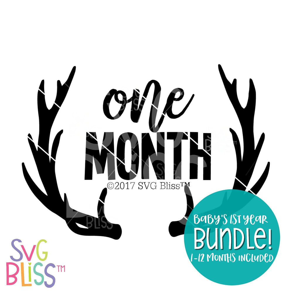 Baby's First Year SVG DXF Bundle