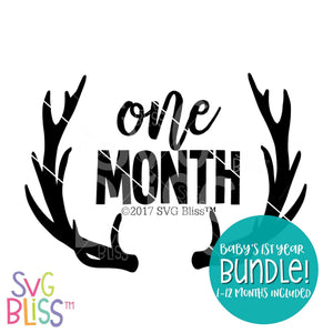 Purchase Baby's First Year Bundle | SVG EPS DXF PNG $5.99 ©SVG Bliss™
