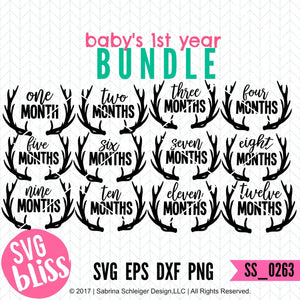 Baby's First Year Bundle - SVG Bliss