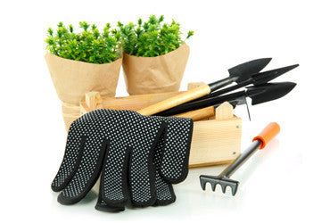 Gloves & Trowel