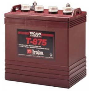Trojan T875 170Ah 8V Deep Cycle Battery