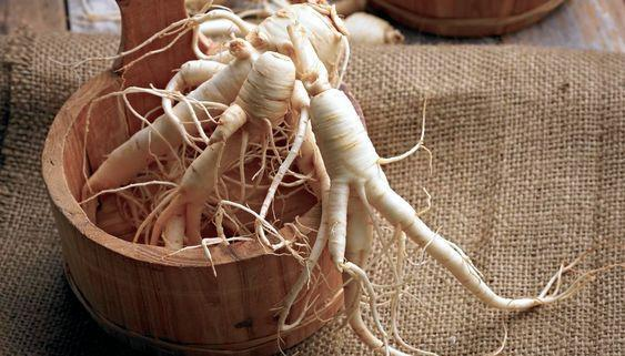 what is ginseng root extract